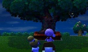 L'arbre ville.