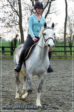 « Un cavalìer sans son cheval est un cavalìer orphelìn ! »
