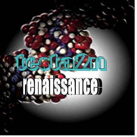 Test Renaissance 2010/2011 - 2019