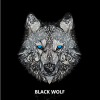 dj-Black-Wolf