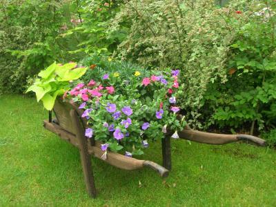 Ma brouette fleurie bienvenue au jardin de marianne - Brouette de jardin en bois ...