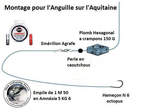 Montage pour pêcher l'Anguille sur l'Aquitaine