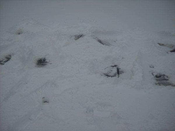 nos imprinte dans la neige