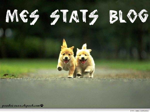 Mes stats blog