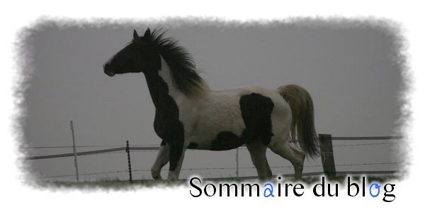→ Sommaire