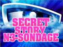 Photo de secret-story-n3-sondage