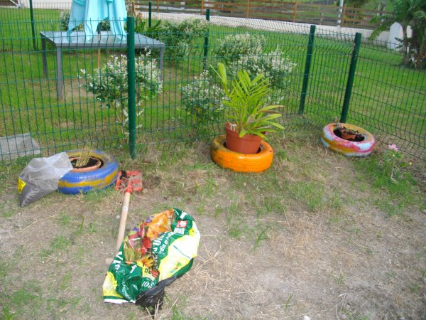 Mon jardin quii reprend du poil de la bêbête