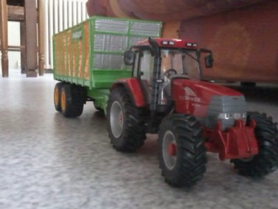 ensilage mais grain