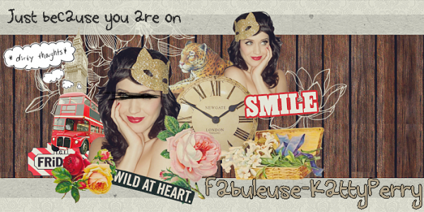 Welcome in Katy Perry's World