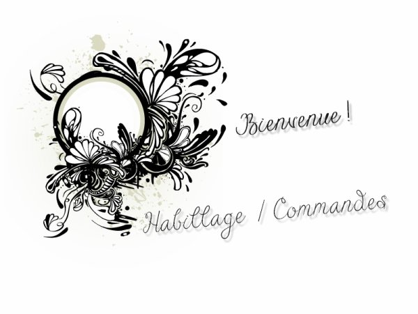 Habillage = Commandes