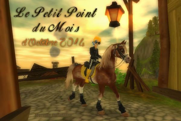 Le Petit Point du Mois (10/2014)