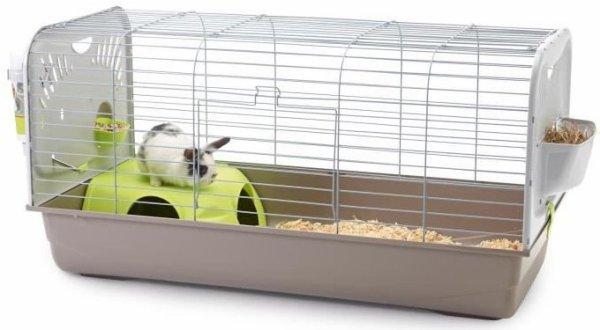 Comment accueillir un lapin chez soi ? (de compagnie)