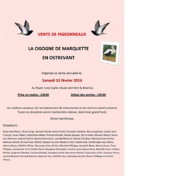 VENTE DE PIGEONNEAUX DE MARQUETTE EN OSTREVANT LE 13 FEVRIER 2016