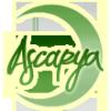 Ascarya