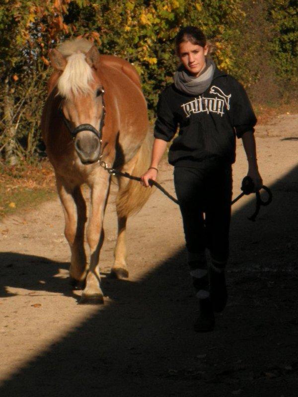 """"""" Faites d'un cheval un compagnon et non un esclave, vous verrez quel ami  extraordinaire il est """""""