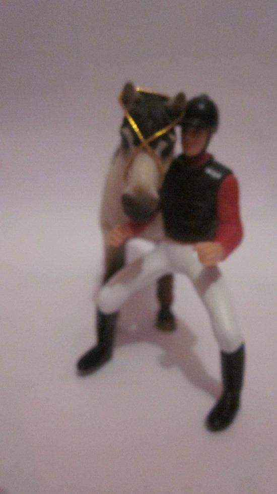 Pressentation des chevaux