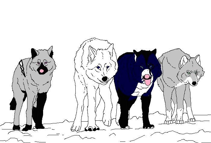 Asha, Mickaela, Nyméria et Ombr-Plume