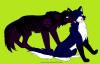 Ténébris( Loup dieu des Ténèbres) et Briska(louve déesse du Grand Nord), les parents de Nyméria