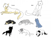 Nyméria(moi), ???, Briska, Melawi, Sapphire, Pelage de Lune, Mickaëla et Yankumi