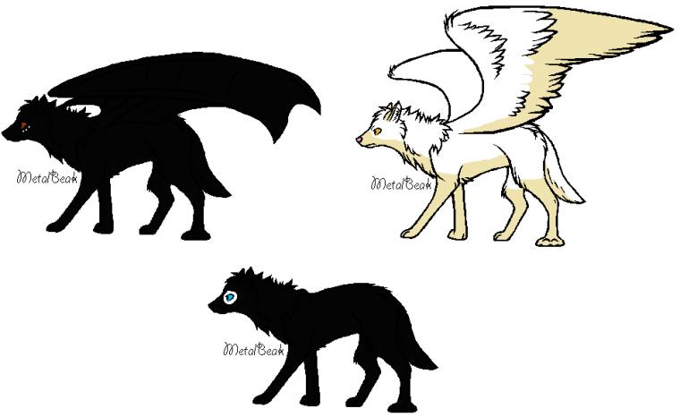 Pelage de Lune demon wolf, Nyméria angel wolf et Hunter wolf