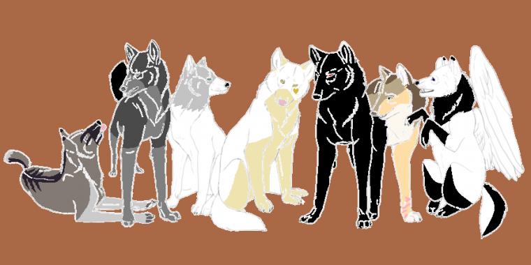Meute de loup (Nyméria(moi), Huyana, Lilas, Mickaëla, Devil, Lerya et Yankumi