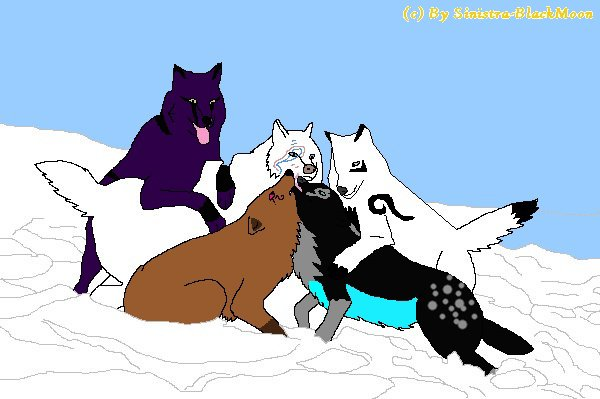 Opale, Neptune (version 1 et 2), Lyra, Pandore (version 1 et 2) et Luna