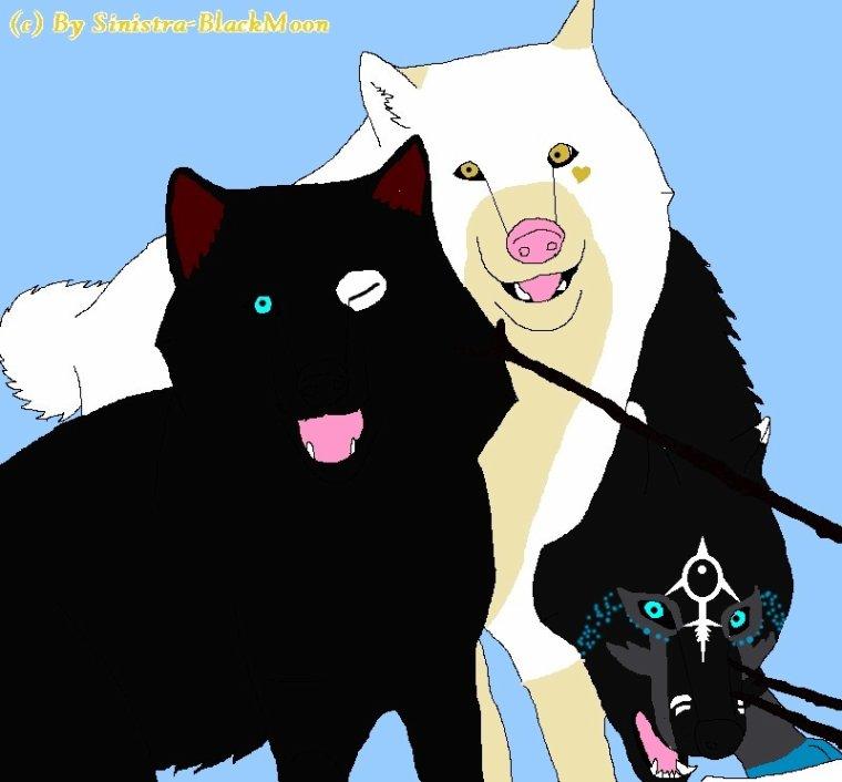 Nyméria, Hunter et Fox