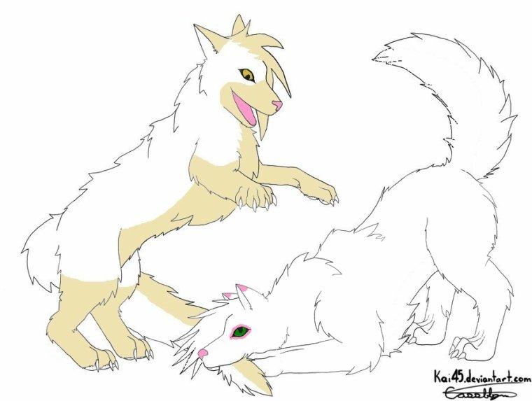 Nyméria et Mickaëla