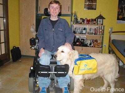 Myopathe: Julien vient d'avoir son chien d'assistance - Gonneville
