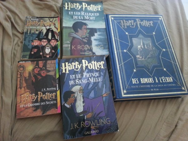 Harry Potter ... Un univers magique !