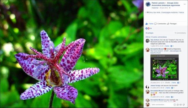 Groupe A.B.A Association botanique argonnaise