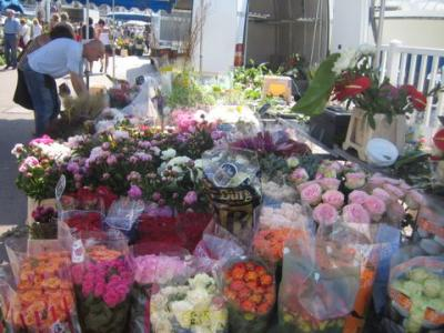 Marche Au Fleur Marseille Steadlane Club
