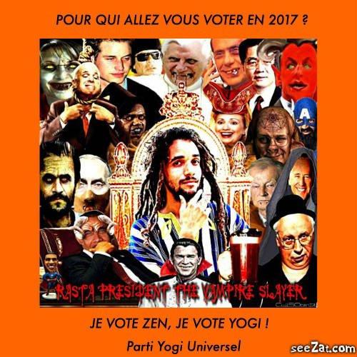 Pour qui allez vous voter en 2017 ?
