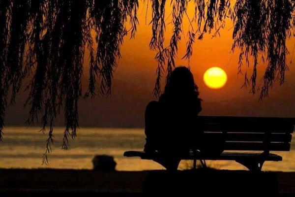 ****douce nuit****