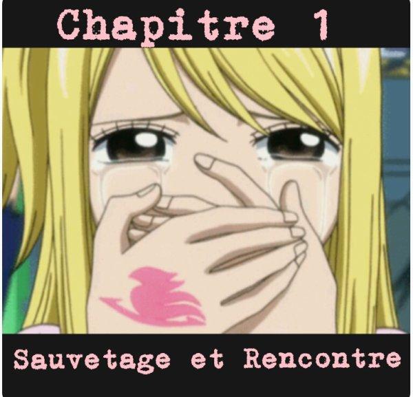 ♥~Chapitre 1 : Sauvetage et Rencontre~♥