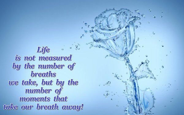 ...Life!