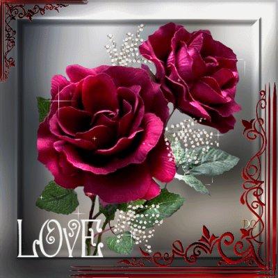 juste love