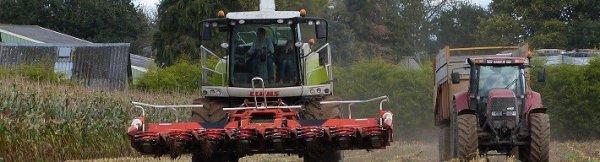 En ce moment sur Breizh-Agri