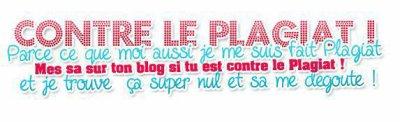 Tous Ensemble Contre Le Plagiat !!