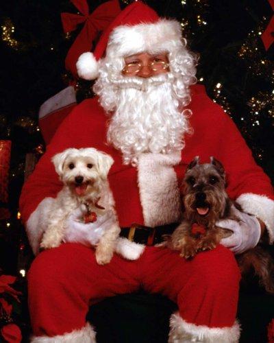 Joyeux Noël à vous tous! ^^