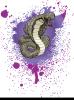 Cobra (Walibi Belgium)