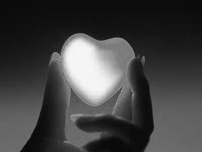 مشاهد قلوب بيضاء