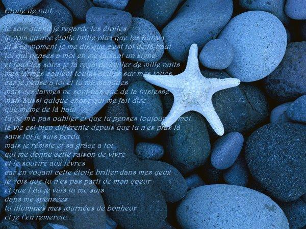 petits poemes de moi
