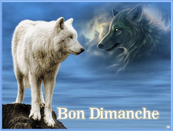 BON DIMANCHE MES AMIS(ES)