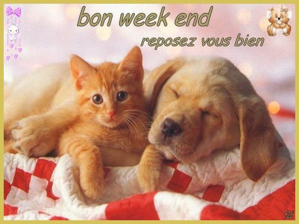 BON WEEK-END A TOUS.