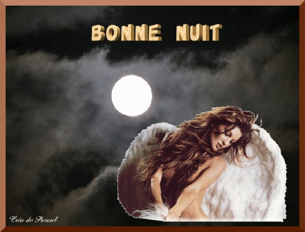 BONNE NUIT MES AMIS(ES)
