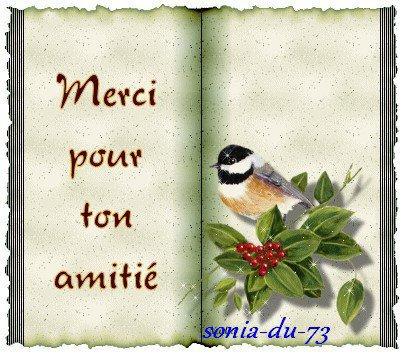 AMITIE A VOUS MES AMIS(ES)