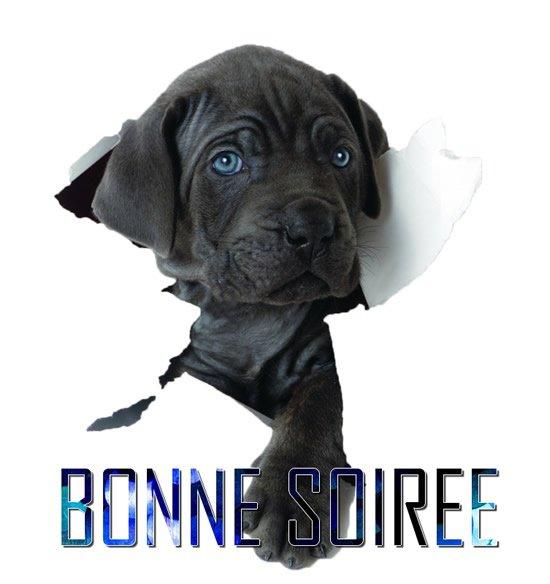 BONNE SOIREE MES AMIS(ES)