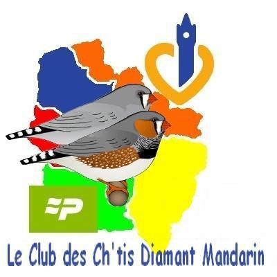 Semaine 39 : Festival de mandarins