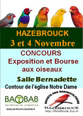 Semaine 44 : Concours de Hazebrouck